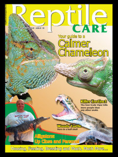 Reptile Care Issue 3