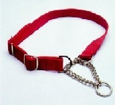 Dog Combi Collar 10mm X 28 to 40cm Canac Red
