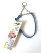 Dog Combi Collar 10mm X 28 to 40cm Blue Canac