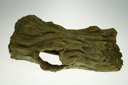 PPI Hollow Tree Log Large 24cm