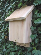 Wildlife World Bat Box