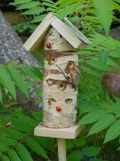 Wildlife World Ladybird Tower
