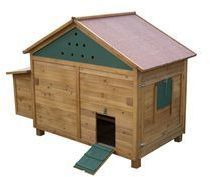 Leighton Chicken Coop With Nesting Box 162x89x125cm