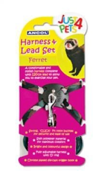 Ancol Ferret Harness Lead Set
