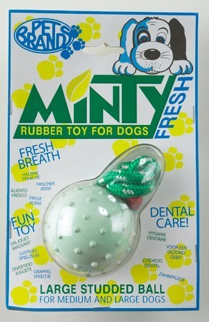 Minty Rubber Ball With Rope Regular by Pet Brands Dog Toy