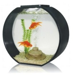 Deco O 20 Round Aquarium 20 Litre Black From Pet Shopper