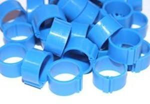 Leg Rings For Adult Hens Blue Pack 100 12mm