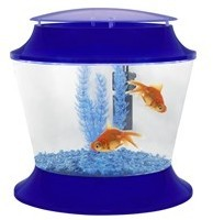 Extra Large Goldfish Bowl 17 Litre Blue Includes Gravel Filter and Plant