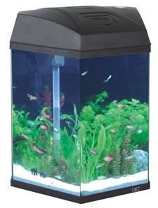 Hexagonal Fish Tank Black 21.6 Litre