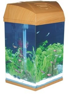 Hexagonal aquarium wood 21 6 litre from pet shopper for Hexagon fish tank lid