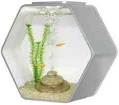Deco Hexo Hexagon Fish Tank Silver