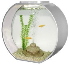 Deco O 20 Round Aquarium 20 Litre Silver From Pet Shopper