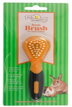 Walter Harrison Small Animal Bristle Brush