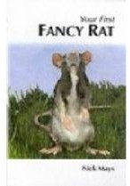 How To Care For Your Fancy Rat Book