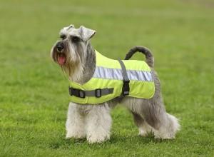 Flectalon Hi Viz Dog Coat 25cm