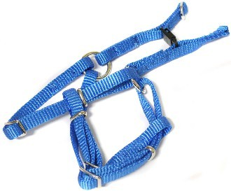 Canac Dog Harness Size 4 Blue