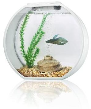 Deco O Mini Round Aquarium 10 Litre White From Pet Shopper