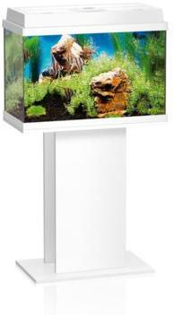 fish tank stand white aquarium aquatic glass fish tank
