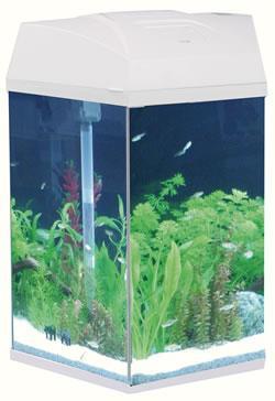 Hexagonal Fish Tank White 21.6 Litre
