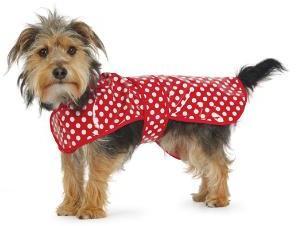 Polka Dot Raincoat Red Small