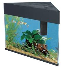 Fish R Fun Corner Fish Tank Black 20 Litre Includes Filter and Lights