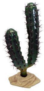 Komodo Finger Cactus 20cm