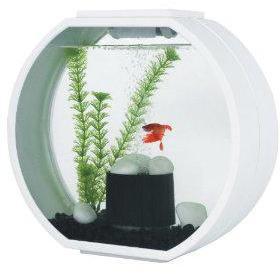 Deco O Mini Round Aquarium 10 Litre White