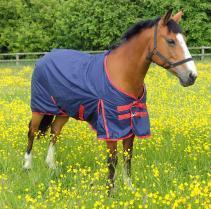 Snowdon Outdoor Horse Rug 6'