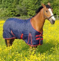 Moonlite Horse Rug 7'