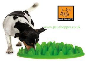 Northmate Green Dog Feeder