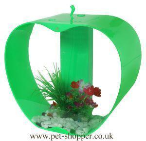 Green iWish Mini Apple Fish Tank 25 Litre