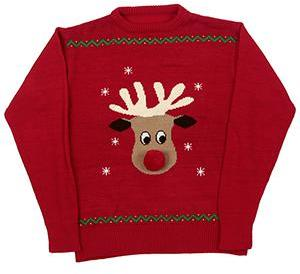 Animate Xmas Jumper Medium
