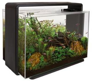 Superfish home 80 ltr aquarium black from pet shopper for Aquarium 80 litres