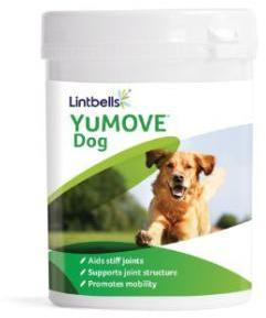 Lintbells Yumove 300 Tablets