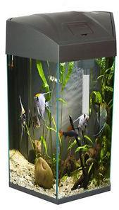 Hexagonal Fish Tank Graphite 21.6 Litre