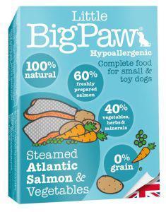 Little Big Paw Dog Salmon & Veg Dinner 150g x 7