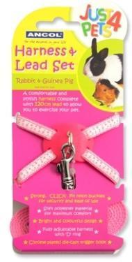 Ancol Rabbit Harness Lead Set Pink