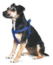 Ancol Padded Dog Harness Medium Blue