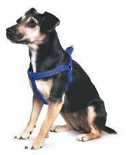 Ancol Padded Dog Harness Medium Blue