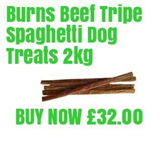 Burns Spaghetti