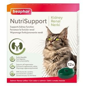 Beaphar NutriSupport Kidney Cat Supplement 12 pack